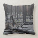 Bosque después del fuego en el parque nacional de  almohadas