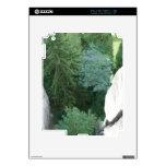 Bosque en Alemania iPad 2 Calcomanía