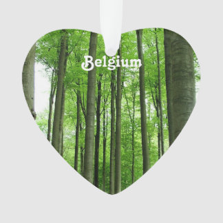 Bosque en Bélgica