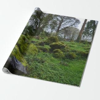 Bosque en el castillo de la lisonja papel de regalo