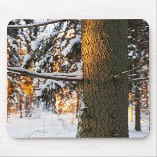 Bosque en el invierno tapete de ratones