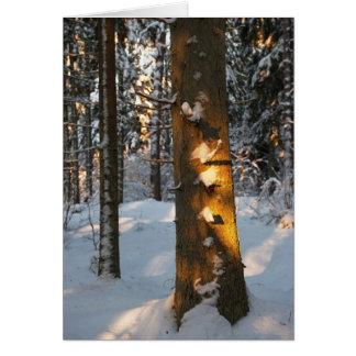 Bosque en el invierno tarjeta de felicitación