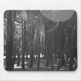 Bosque en el parque de Sholom en blanco y negro Alfombrillas De Ratones