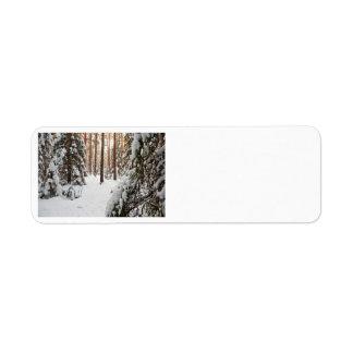 Bosque en invierno etiqueta de remite