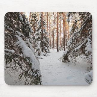 Bosque en invierno tapete de ratones