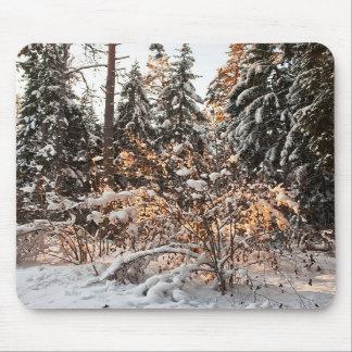 Bosque en invierno alfombrillas de ratón