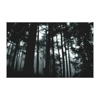 Bosque encantado impresión en lienzo estirada