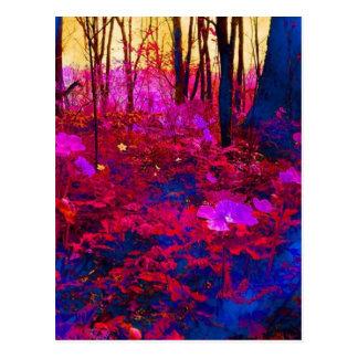 Bosque encantado tarjetas postales