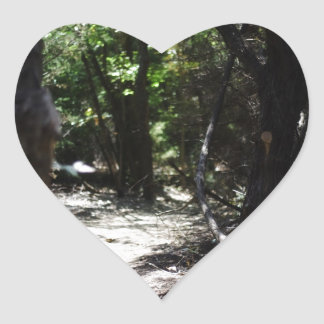 Bosque espeluznante pegatinas corazon