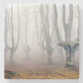 bosque espeluznante posavasos de piedra