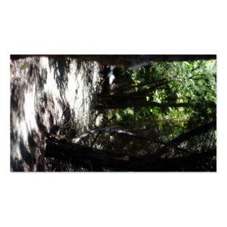 Bosque espeluznante tarjetas de visita