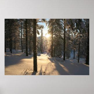 Bosque finlandés póster