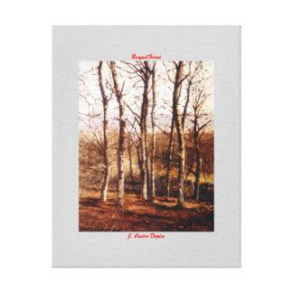 Bosque/Forest Impresión En Lona