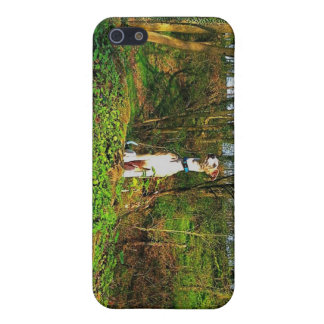 Bosque iPhone 5 Protectores
