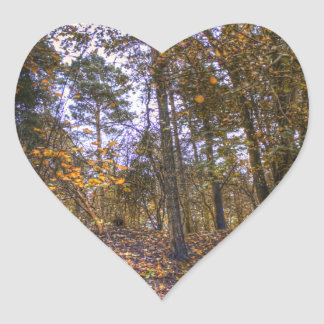 Bosque HDR del otoño Colcomanias De Corazon Personalizadas