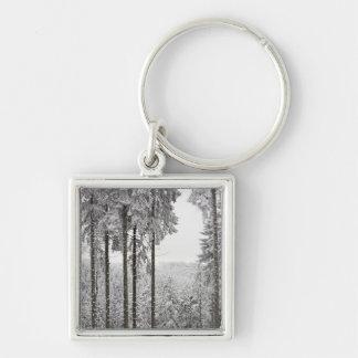 Bosque imperecedero en invierno llaveros personalizados