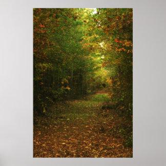 Bosque mágico posters