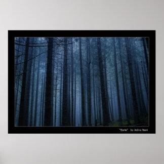 Bosque misterioso póster