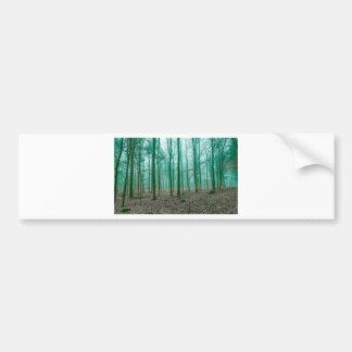 Bosque místico en la niebla en verde pegatina para auto