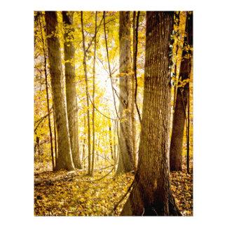 Bosque místico membrete personalizado