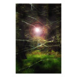 Bosque místico papelería