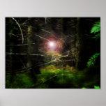 Bosque místico posters