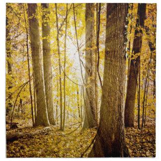Bosque místico servilletas de papel