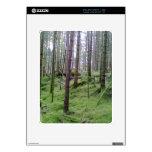 Bosque muchos árboles iPad calcomanías