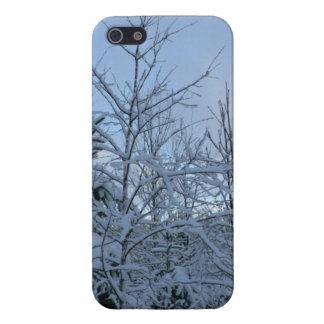 Bosque Nevado iPhone 5 Fundas