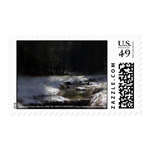 Bosque Nevado Oregon, cala 12 del Fox Envio