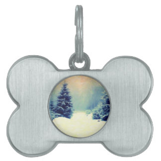 bosque nevoso 2 placas de mascota