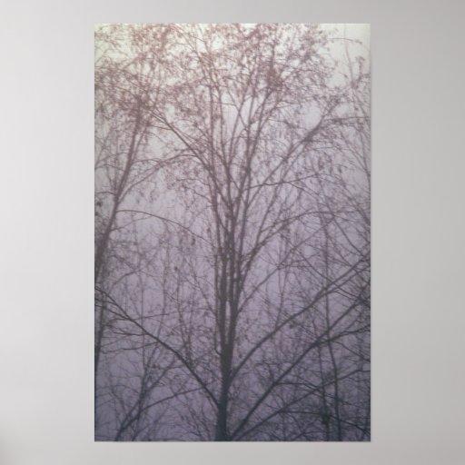Bosque Niebla-enshrouded extracto Poster