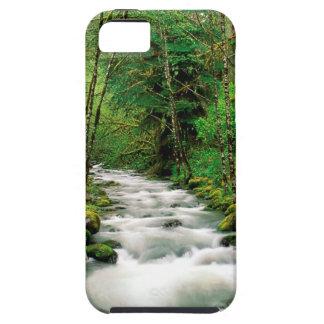 Bosque Oregon de Mckenzie Willamette del río iPhone 5 Case-Mate Fundas