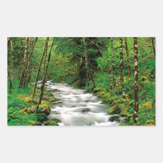 Bosque Oregon de Mckenzie Willamette del río Rectangular Pegatinas