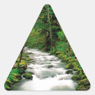 Bosque Oregon de Mckenzie Willamette del río Calcomanías Trianguloes