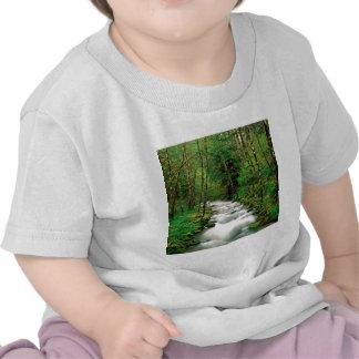 Bosque Oregon de Mckenzie Willamette del río Camiseta