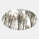 Bosque oscuro pegatina ovalada