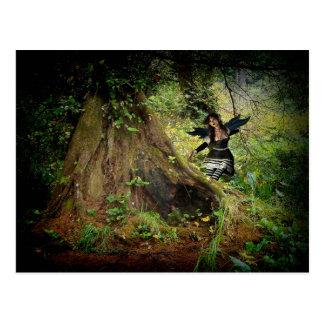 Bosque oscuro vidente postales