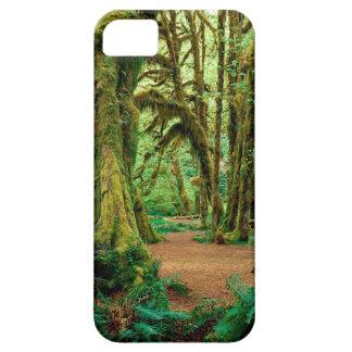 Bosque Pasillo de los musgos olímpicos iPhone 5 Fundas