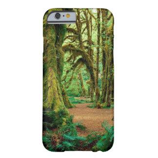 Bosque Pasillo de los musgos olímpicos Funda De iPhone 6 Barely There