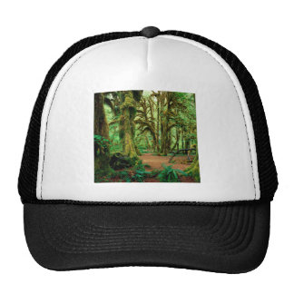 Bosque Pasillo de los musgos olímpicos Gorro