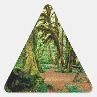 Bosque Pasillo de los musgos olímpicos Pegatina Triangular