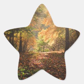 bosque pegatina en forma de estrella