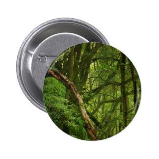 Bosque Pin Redondo De 2 Pulgadas