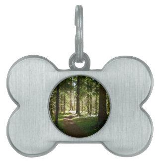 Bosque Placas De Mascota