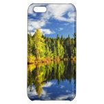Bosque que refleja en el lago