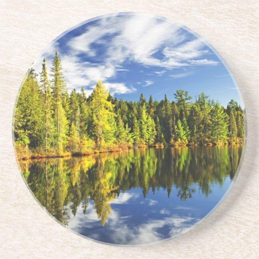 Bosque que refleja en el lago posavasos para bebidas