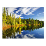 Bosque que refleja en el lago postal