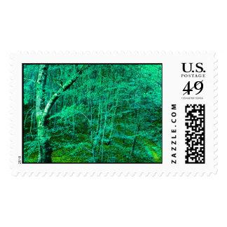 bosque sellos