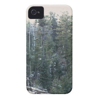 Bosque spruce mezclado enorme iPhone 4 cárcasas